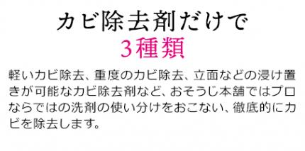 pc_2009hayawari_02-01